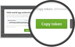 A token is generated and appears in the authorization pop-up window