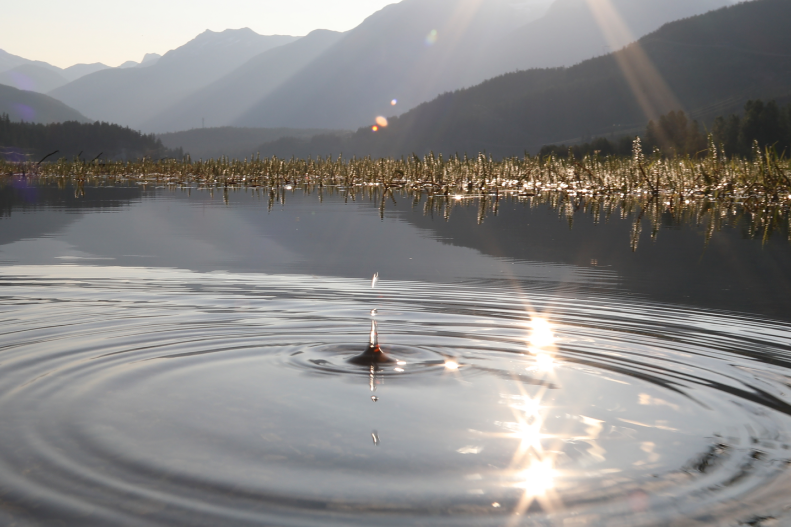 Ripples of a drop of water hitting a pond