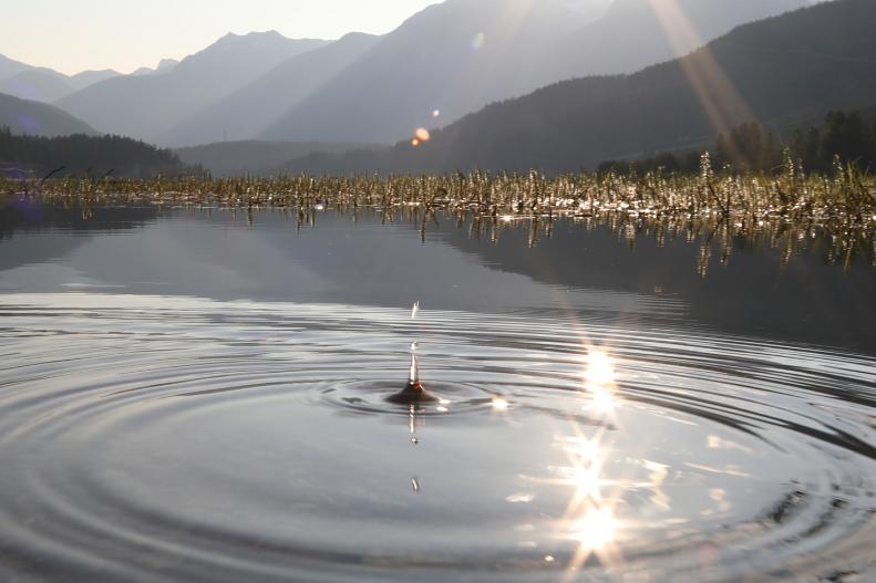 ripples-on-a-pond